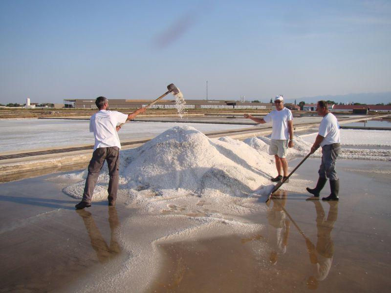 Story of salt